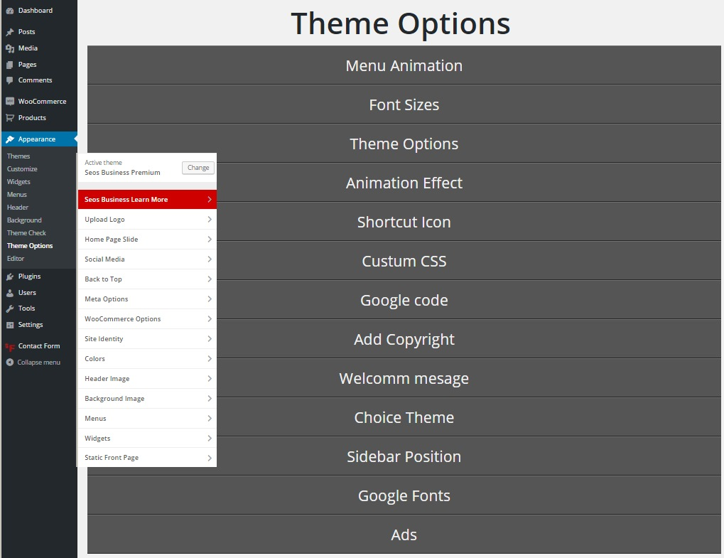 seos business theme options