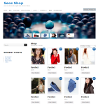 Seos Shop WordPress Theme