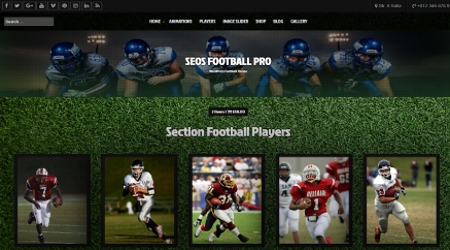 Free WordPress Football Theme